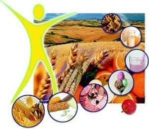 Пищевые волокна клетчатка гастрит